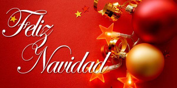 ¡ Os deseamos Felices Fiestas !